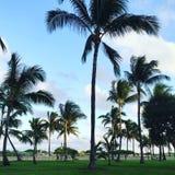 Miami plaża - southbeach Zdjęcie Royalty Free
