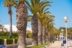 MIAMI PLATJA, SPANIEN - 24. APRIL 2017: Die Palmen-Gasse Kopieren Sie Platz Stockbilder