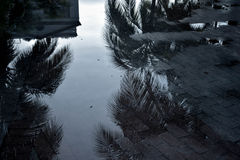 Miami reflexioner Arkivfoto