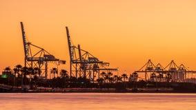 Miami schronienia linia horyzontu przy zmierzchem obrazy royalty free