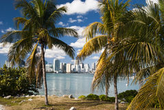 Miami Skyline. With palm trees from South beach in a sunny day with clouds - Miami (USA - 2010 stock images