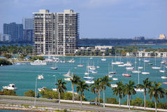 Miami Skyline. Skyline of the city of Miami with sailboats and a roadway Royalty Free Stock Photo