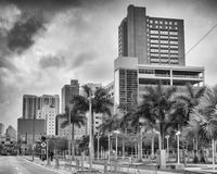 Miami skyline as seen from the street Royalty Free Stock Photo