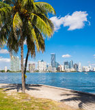 Miami Skyline Royalty Free Stock Photos