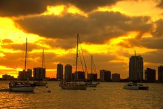 Miami skyline at sunset Stock Photos
