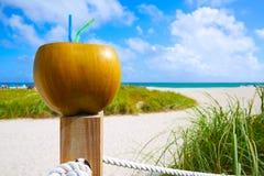 Miami South Beach 2 straws coconut Florida Stock Photo