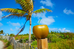 Miami South Beach 2 straws coconut Florida Stock Photos
