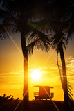 Miami South Beach sunrise. With lifeguard tower and palm tree, USA royalty free stock photo