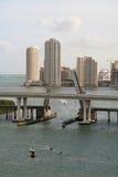 Miami trekt Brug stock afbeelding