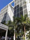 Miami van de binnenstad Stock Afbeeldingen