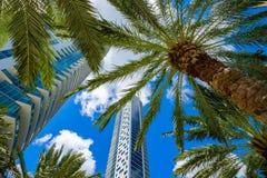 Miami van de binnenstad Royalty-vrije Stock Foto's