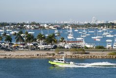 Miami vatten och vägtrans. Fotografering för Bildbyråer