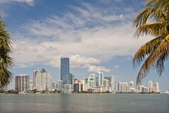 Miami waterfront skyline. Scenic view of Miami city waterfront skyline viewed from Key Biscayne, Florida, U.S.A Royalty Free Stock Images