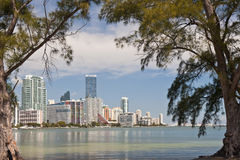 Miami waterfront skyline Stock Photo