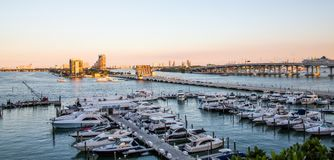 Miami Yacht Basin in Afternoon Light stock photography