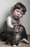 miaow Royaltyfria Foton