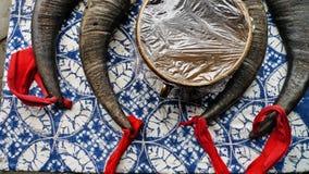 Miaoyingbinvinet i Kina Royaltyfri Bild