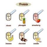 Miarki Z Różnym proteina proszkiem ilustracja wektor