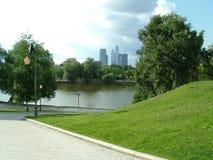 miasta drapacz chmur lato drzewa Obrazy Stock