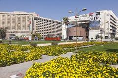 miasta Dubai kwiaty Obrazy Stock