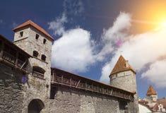 miasta Estonia ostrości średniowieczna część Tallinn góruje ścianę Tallinn estonia Obraz Royalty Free
