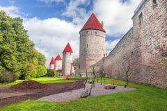 miasta Estonia ostrości średniowieczna część Tallinn góruje ścianę Tallinn estonia Fotografia Stock