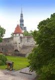 miasta Estonia ostrości średniowieczna część Tallinn góruje ścianę Tallinn estonia Obrazy Stock