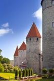 miasta Estonia ostrości średniowieczna część Tallinn góruje ścianę Tallinn estonia Zdjęcia Stock