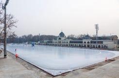 Miasta Parkowy Lodowy lodowisko w Budapest, Węgry Zdjęcia Stock