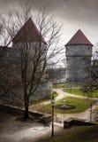 miasta stary Tallinn widok Zdjęcia Stock