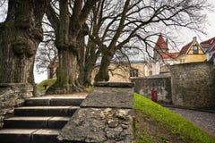 miasta stary Tallinn widok Obraz Stock