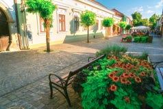Miasteczko Szentendre w Węgry Zdjęcie Stock