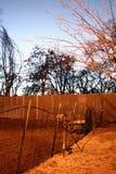 miasto barnyard Fotografia Royalty Free