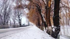 miasto blisko kolejowych drogowych połysk snow słońce zima drewno Zdjęcia Royalty Free
