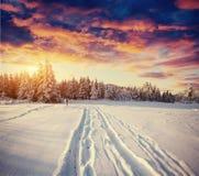 miasto blisko kolejowych drogowych połysk snow słońce zima drewno Piękna koloru res ilustracja z holida Zdjęcie Stock
