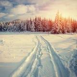 miasto blisko kolejowych drogowych połysk snow słońce zima drewno tajemniczy krajobrazu Zdjęcia Stock