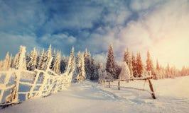 miasto blisko kolejowych drogowych połysk snow słońce zima drewno tajemniczy krajobrazu Zdjęcie Stock