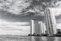 Miasto drapacze chmur na błękitnej dennej stronie w Miami, usa obrazy royalty free