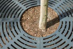 Miasto drzewny trzon ochraniający obraz stock