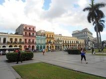 Miasto Historycznych budynków Kuba Hawański drzewko palmowe Obrazy Royalty Free