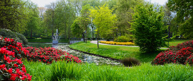 miasto jak park zdjęcie royalty free