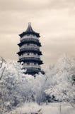 miasto jest tang wieży Zdjęcia Stock