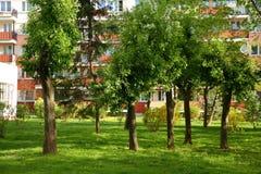 Miasto kwadrat na zielonym gazonie wśród wysokich budynków mieszkalnych obraz royalty free