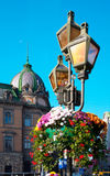 miasto kwiaty Zdjęcia Stock