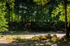 Miasto las Yalova, Turcja - Fotografia Stock