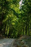 Miasto las Yalova, Turcja - Zdjęcia Royalty Free