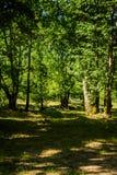 Miasto las Yalova, Turcja - Zdjęcie Royalty Free