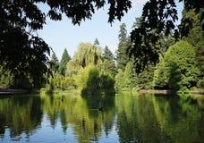 miasto laurelhurst park Portland Oregon Obraz Stock