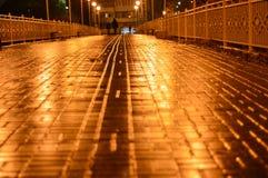 Miasto most przy nocą Zdjęcie Royalty Free