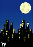 miasto noc ilustracja wektor